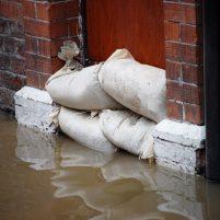 Bell Street Preservation - Flood Damage Restoration